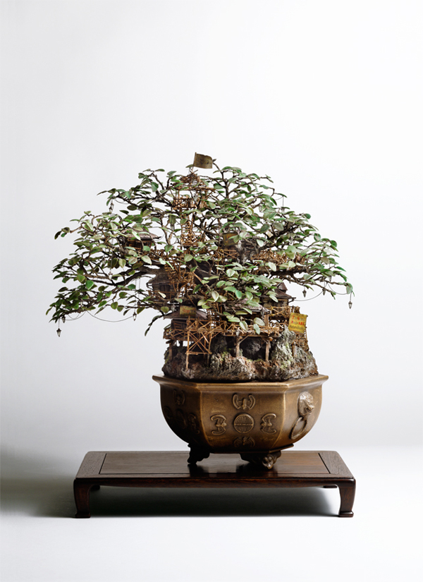 bonsai-tree-decor-inspiration1