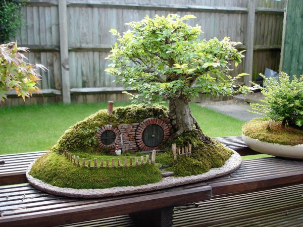 bonsai-tree-decor-inspiration5