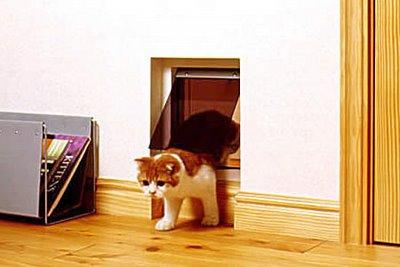 Кошкин дом 13