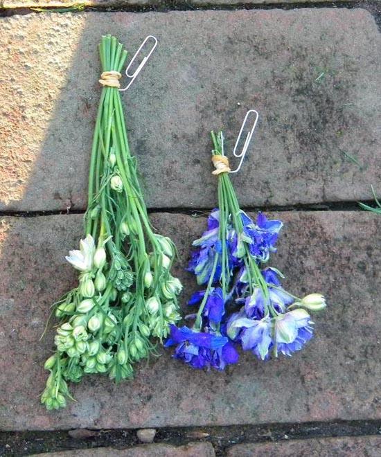 Заготовки из цветов