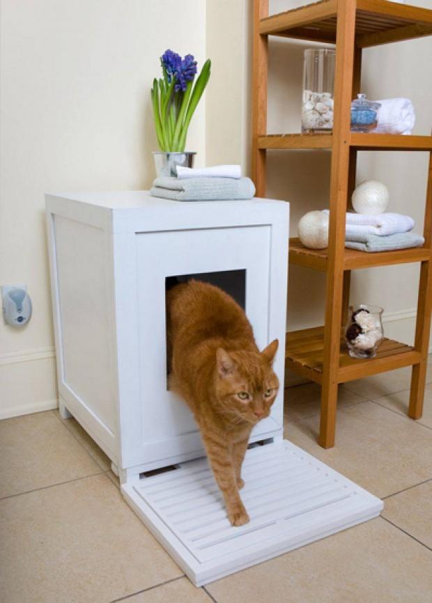 Интерьер для домашних животных 5