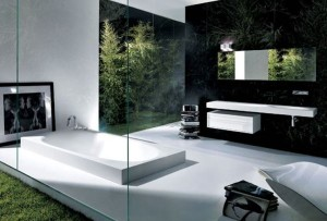 Интерьер ванной комнаты (2)
