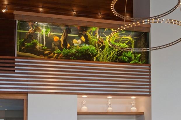 Дом с аквариумом 3