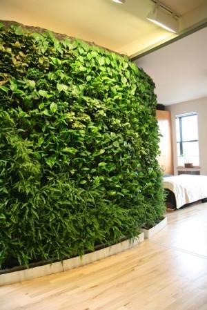 Живая зеленая стена в спальне