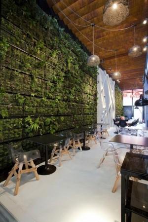 Живая зеленая стена