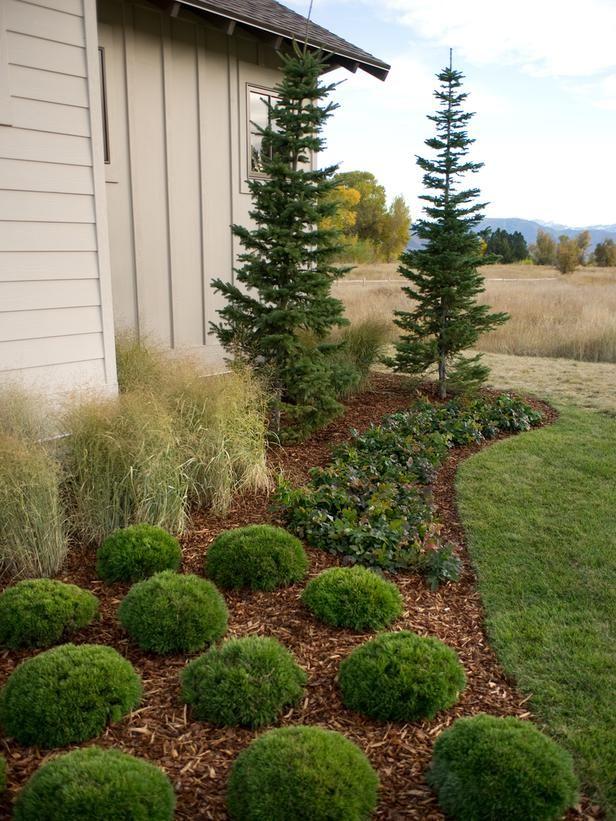 Использование древесных опилок как защиту от травы и скрытие земли