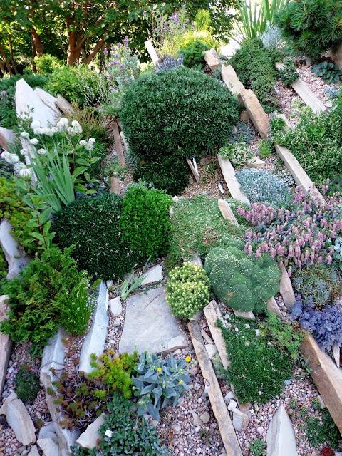 Большая клумба с постоянно зелеными растениями