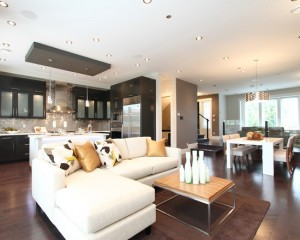 contemporary-living-room (17)