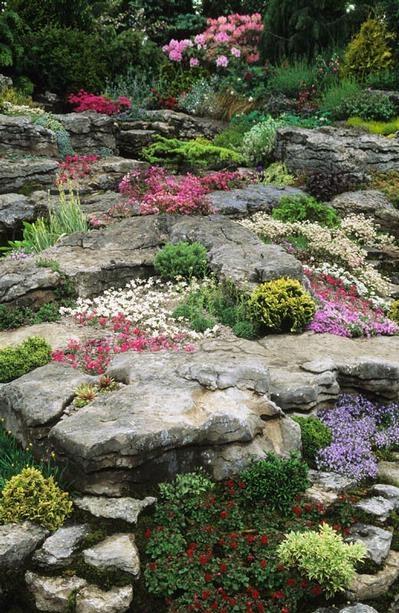 Сочетание ярких цветов на альпийской горке