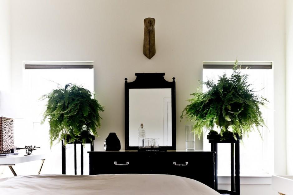 Живые растения в интерьере черно-белой спальни