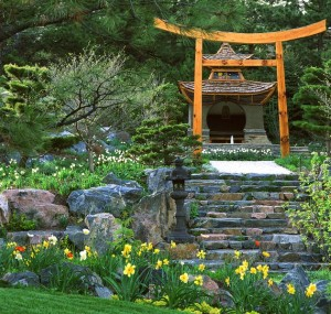 Extravagant-and-exquisite-Japanese-garden-design-with-a-touch-of-flair