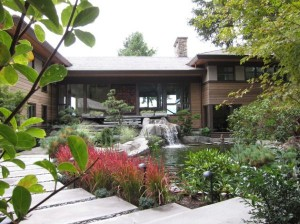Japanese-Blood-Grass-and-pond-with-lovely-waterfalls-stand-out-in-this-home-garden