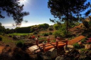 Japanese-Garden-Bridge-adds-a-unique-element-to-your-backyard