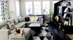 Small-black-and-white-living-room-with-a-plush-couch-at-its-heart