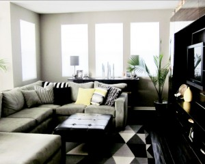 contemporary-living-room (19)