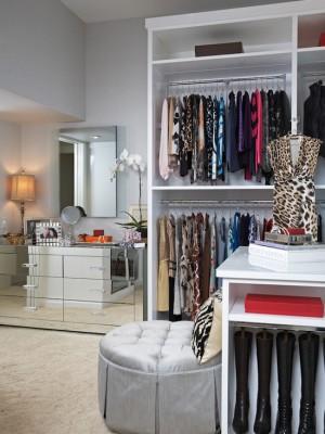 transitional-closet (1)