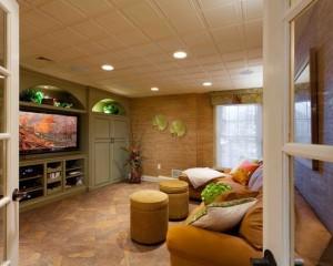 tropical-basement