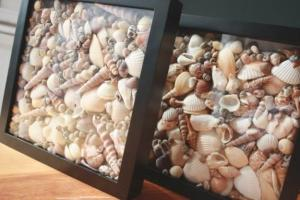 sea-shell-crafts-furniture-decoration-home-decorations-8