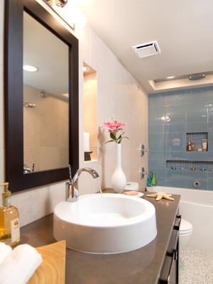 transitional-bathroom (3)