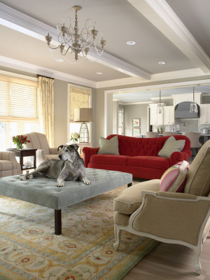 traditional-living-room (20)