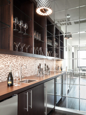 transitional-home-bar