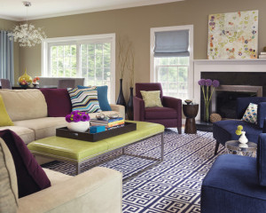 transitional-living-room (4)