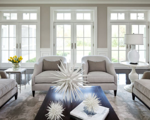 transitional-living-room (8)