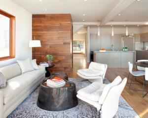 contemporary-living-room (44)