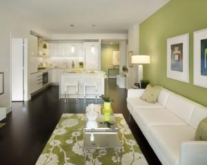 contemporary-living-room (45)