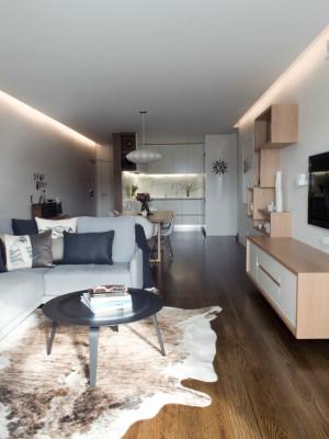 modern-living-room (16)