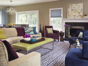 transitional-living-room (3)