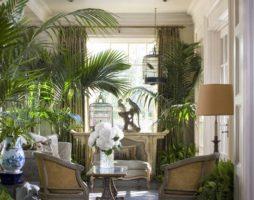 Комнатные растения – кусочек природы в интерьере