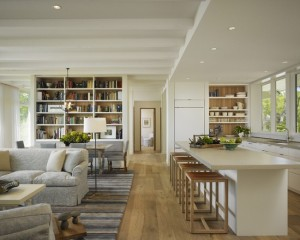 transitional-living-room (1)