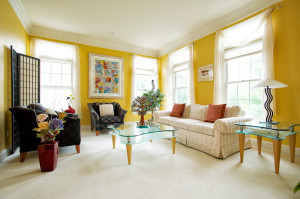 transitional-living-room (6)