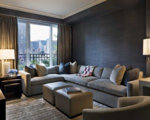 contemporary-family-room (8)