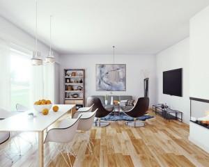 scandinavian-living-room (7)