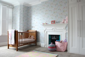 transitional-nursery (7)