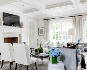 322156c601e481d9_4033-w500-h400-b0-p0--traditional-living-room