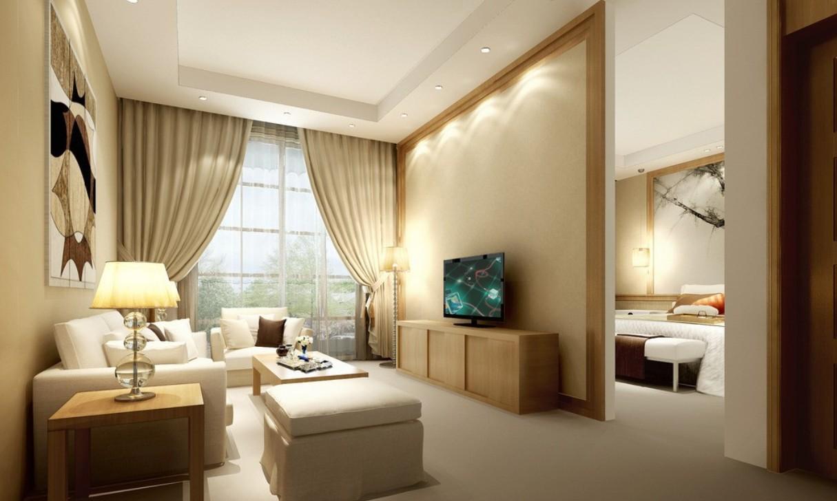 Дизайн гостиная плюс спальня