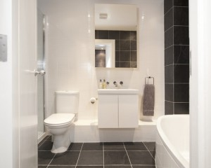 c541ec0b0ffb67d6_3087-w500-h400-b0-p0--contemporary-bathroom