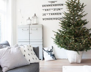 c1f19d9102adf3b1_0333-w500-h400-b0-p0--scandinavian-living-room