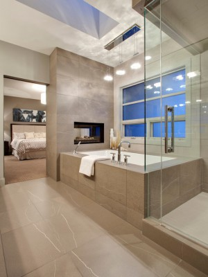 9fe1727802de9e66_4462-w550-h734-b0-p0--contemporary-bathroom