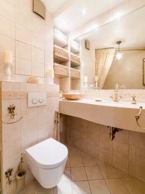 55b106c104945f46_0817-w550-h734-b0-p0--klassicheskiy-tualet