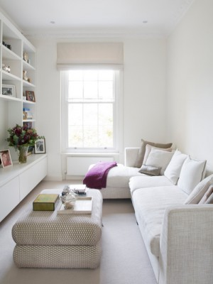 cc31d3b5044633ef_7251-w500-h666-b0-p0--contemporary-living-room