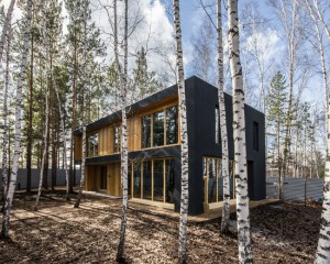 44e116de05bdc579_1895-w550-h440-b0-p0--modernizm-fasad-doma