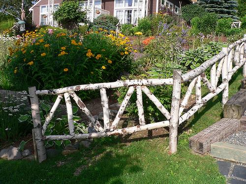 Декоративный забор из березы