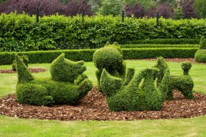 Baby dogs playing from stuctured Topiary park Durbui, Belgium