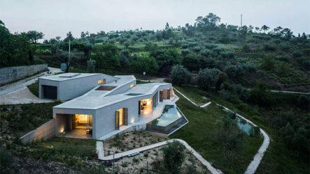 Гармония природы и архитектуры в проекте дома с плоской крышей