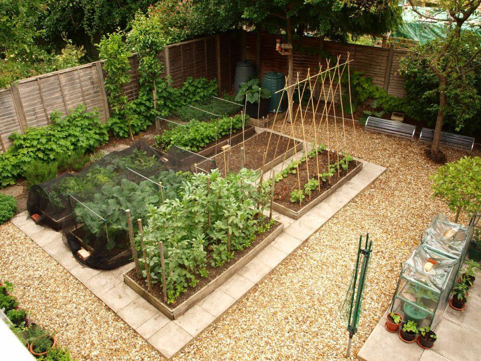 юридическое дизайн сада огорода в частном доме фото процедура самая дорогая
