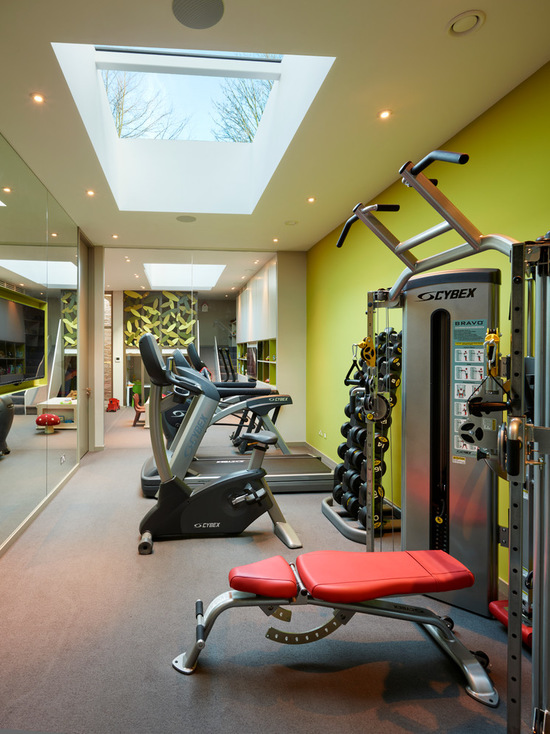 1dc1cc8d05c528e1_9682-w550-h734-b0-p0-contemporary-home-gym